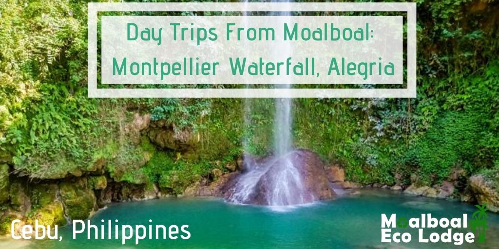 Montpellier Waterfall, Montpeller Falls, Alegria, Philippines, day trip from Moalboal, things to do in Moalboal, chasing waterfalls in Cebu, bucket list, secret waterfall, jade rock pool, how to get to Montpeller Falls, when is the best time to visit Montpellier Falls, hidden gem of cebu, secret of cebu, Moalboal Eco Lodge