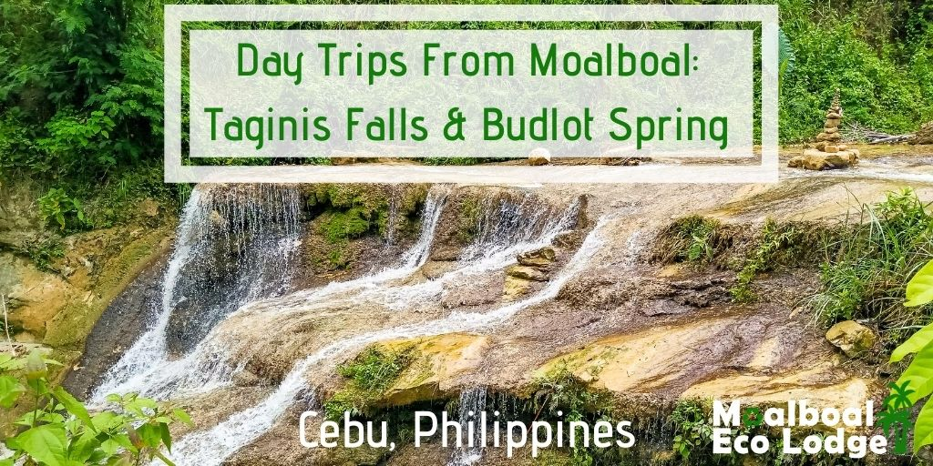 Taginis Falls and Budlot Spring, day trip from Moalboal, things to do in Moalboal, chasing waterfalls in Cebu, bucket list, how to get to Taginis Falls and Budlot Spring, when is the best time to visit Tanginis Falls, hidden gem of Cebu, secret of Cebu, Moalboal Eco Lodge
